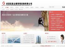 武汉高星企业管理咨询有限公司
